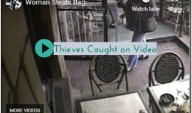 Purse Theft Videos