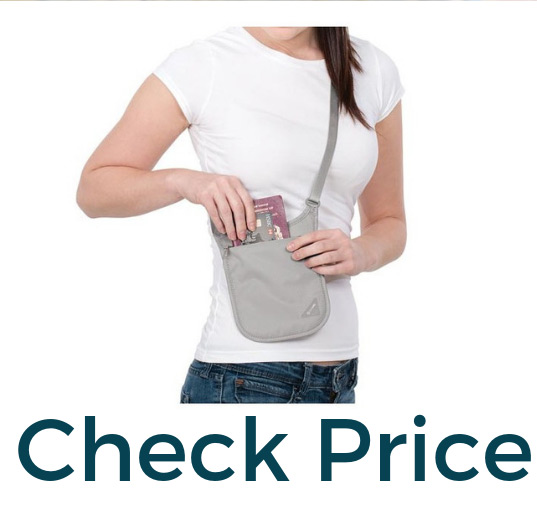 Best money belts Pacsafe Neck Pouch